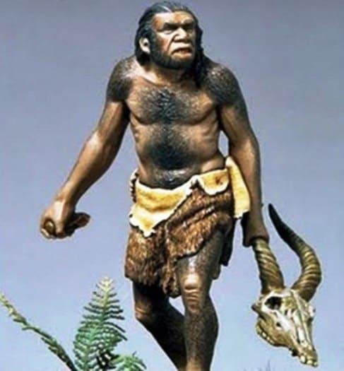Homo Soloensis