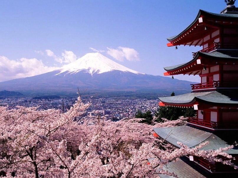 Gambar Pemandangan Gunung Fuji, Kuil, dan Bunga Sakura