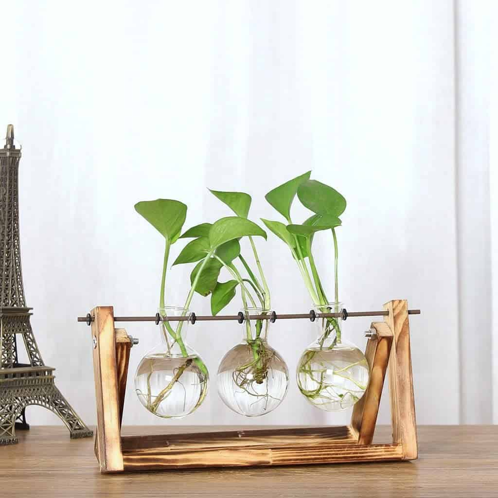 gambar Clear Glass Vase Glass Terrarium Creative Bottle Plant
