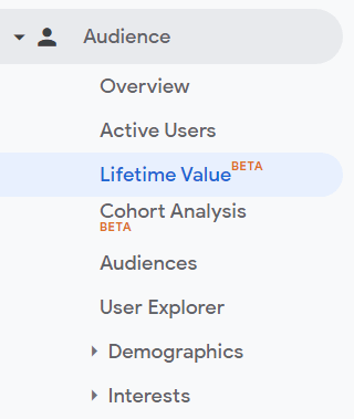 lifetime value google analytics